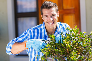 young man trimming a shrub