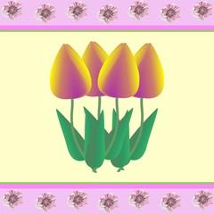 Tulpen und Malven