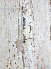 Travertine marble texture