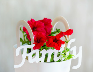 Family decoration word and red flowers