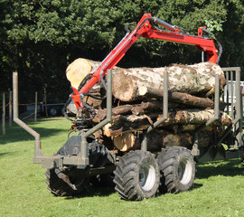 An Agricultural Trolley for Moving Forestry Timber.