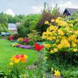 Garten mit Azalee, Tulpen und Polsterphlox