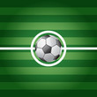 Soccer ball on center of grass field - vector illustration