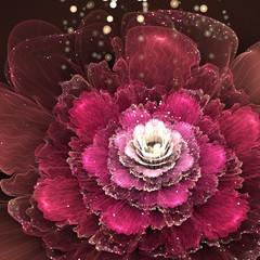 red fractal rose