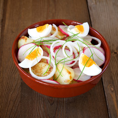 Spring salad of radish, potato and onion