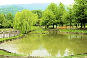 park with a pond in Brescia, northern Italy