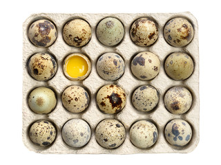 Quail eggs in paper tray isolated on white background