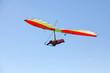 Hang glider flying - 64684102