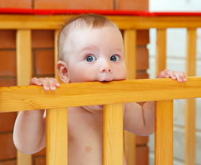Little boy with blue eyes bites wooden board of his bed