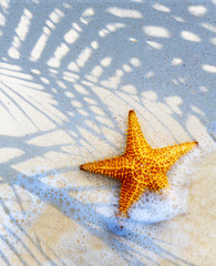 Art Tropical island beach summer background
