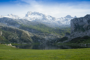 Ercina lake, mountain lake, asturias Spain