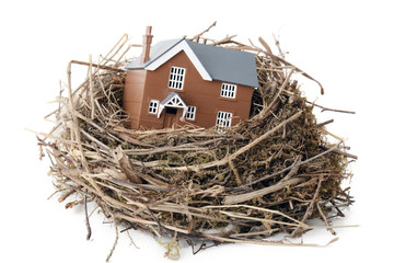 making your nest