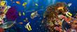 Coral, fish and shark