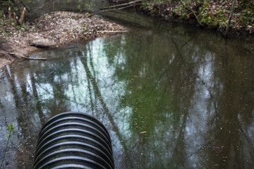 Dirty water stems from the pipe polluting the forest river