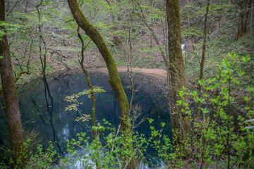 十二湖 青池