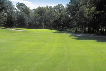 골프장 풍경