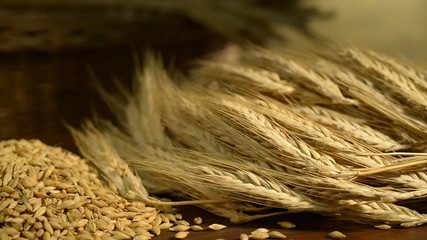 barley,rotation of barley