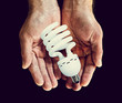 lightbulb in hands