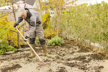 Gardener raking soil