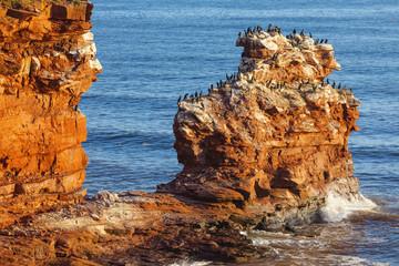 Prince Edward Island Cliffs