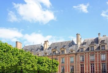 Place des Vosges et végétation, square Louis XIII (Paris)