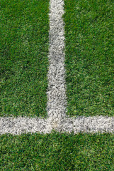 White line markings on the soccer field