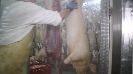 Butcher working in the slaughterhouse
