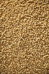 Raw Organic Amaranth Grain