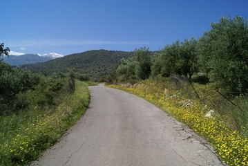 road, Spring season,Stilos, Crete island, Greece