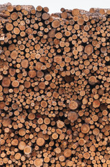 Holzindustrie, Kiefernholz, Baumstämme, Forstprodukte