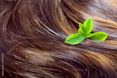 Fotobehang Spa Hair care concept: beautiful shiny hair with green leaves