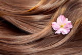 Beautiful healthy shiny hair texture with a flower