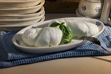 fresh italian mozzarella