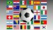 Fußball WM 2014 Teilnehmerländer