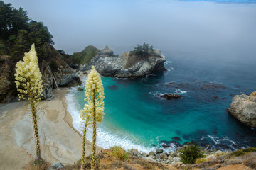 McWay Falls - Big Sur State Park, California, USA