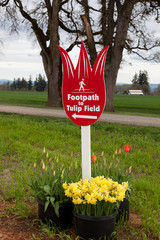 Tulip Field Sign