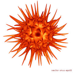 virus cell vector
