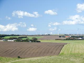 ferme eolienne danemark