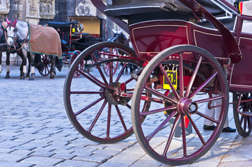 Horse carriage in front of saint Stephen's cathedral at Vienna