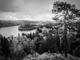 Black & White Lake View