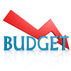 Arrow down budget