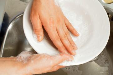 Le mani della casalinga