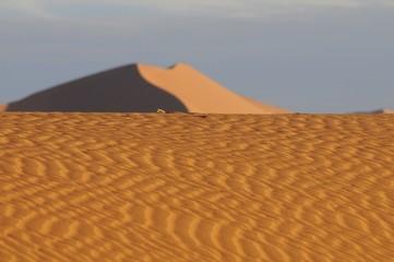 Sandrippeln auf den Dünen im Sossusvlei