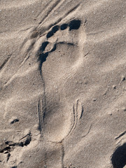 Close up of footprint on sandy beach