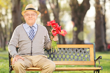 Senior man posing in park with red tulips seated on bench
