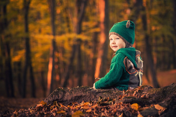 cute boy in green clothes sitting at fall forest