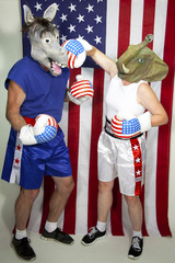 Republican Boxing a Democrat