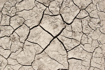 The cracks on the parched earth