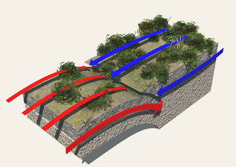 Placche tettoniche, margine convergente, terremoti