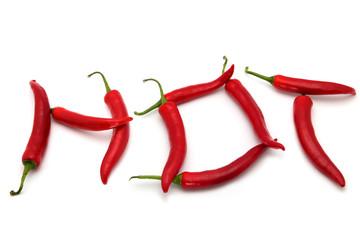 Hot Schriftzug Rot